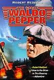 echange, troc The Great Waldo Pepper [Import USA Zone 1]