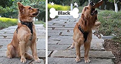 Chai's Choice Best Front Range No-Pull Dog Harness. $29.95 Summer Special ! 3M Reflective Outdoor Adventure Pet Vest with Handle. *New 2015 TrueLove Model* Offered in 3 Stylish Colors (Bold Black, Citrus Orange, Lime Green) and 5 Sizes. Get it Fast with C