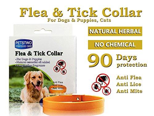 collar-de-pulgas-y-garrapatas-para-todo-tipo-de-perros-y-gatos-natural-del-aceite-esencial-1-pack