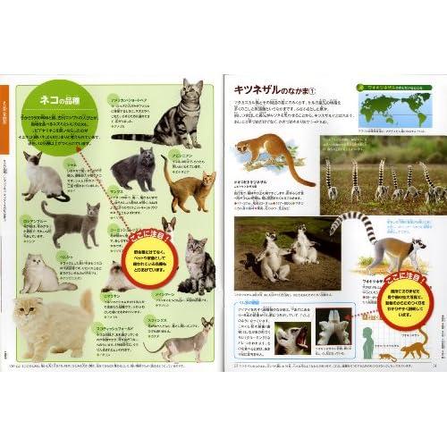 動物 (ポプラディア大図鑑WONDA)