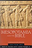 img - for Mesopotamia and the Bible: Comparative Explorations book / textbook / text book