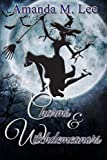 Charms & Witchdemeanors (Wicked Witches of the Midwest ) (Volume 8)