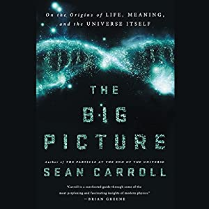 The Big Picture: On the Origins of Life, Meaning, and the Universe Itself Hörbuch von Sean Carroll Gesprochen von: Sean Carroll