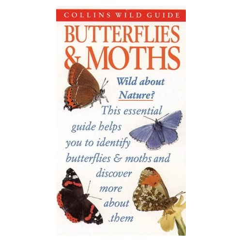 Butterflies & Moths of Britain and Europe (Collins Wild Guide) by John Still