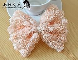 DIY bowknot lace fabric 6 rows 3D Rose lace trim phone beauty lace (Beige)
