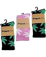 3x PlantLife Chaussettes en taille universelle / / 2x noir/vert 1x rose/blanc