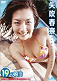 矢吹春奈 19の瞬間 [DVD]