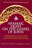 img - for Aramaic Light on the Gospel of John book / textbook / text book