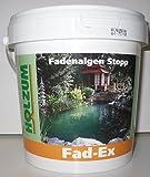 Holzum Fadenalgen Stopp 1000 ml