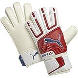 Puma Powercat 3.12 Goalkeeper Gloves