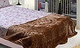 AmazingHind AC blanket.Mink Korean soft double bed ac quilt.The best ac blankets online. Color-Camel