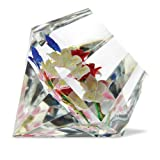 Caithness Royal Embrace Glass Paperweight