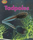 Tadpoles (Minipets) (0739821954) by Theresa Greenaway