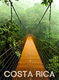 Costa Rica Beach Rainforest Expansion Bridge Central America Travel Poster Advertisement