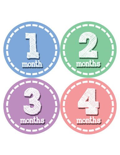 Months in Motion 093 Monthly Baby Stickers Baby Girl Month 1-12 Milestone Age