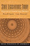 img - for State Legislatures Today: Politics Under the Domes book / textbook / text book