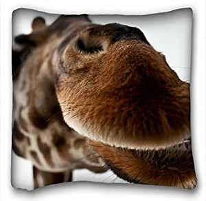 Amazon.com - Decorative Square Throw Pillow Case Animals camel face s mouth hair 18