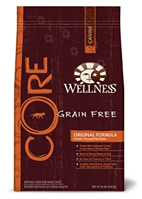 Wellness Grain-Free Dry Dog Food for Adult Dogs, CORE Original, 26-Pound Bag by Wellness