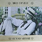 Victory mixture [Vinyl LP]