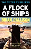 Brian Callison A Flock of Ships