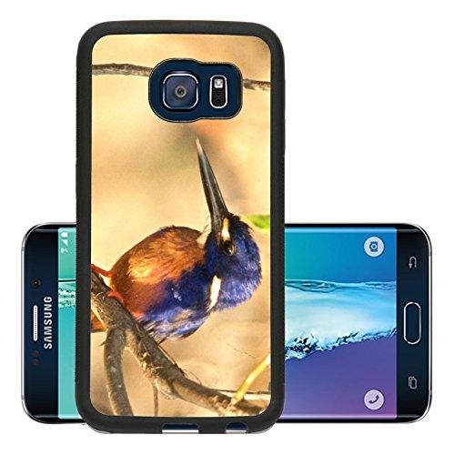 Luxlady Premium Samsung Galaxy S6 Edge Aluminum Backplate Bumper Snap Case Kudu red billed oxpecker Image 24131967524 (Kudu Edge compare prices)