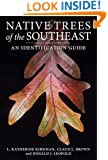 Native Trees of the Southeast: An Identification Guide