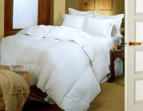 Egyptian Natural Blend Down Comforter, 400-Thread Count, Full/Queen