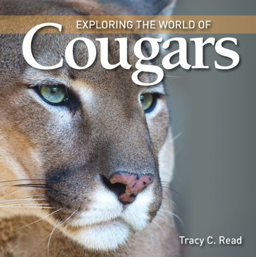 Exploring the World of Cougars, Tracy C. Read