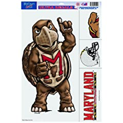 Buy NCAA Maryland Terrapins 11-by-17 Inch Ultra Decal by WinCraft