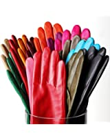Elma Women's Italian Cashmere Lined Leather Gloves Classical Plain Style