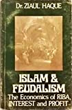 img - for Islam & feudalism: The economics of riba, interest and profit book / textbook / text book