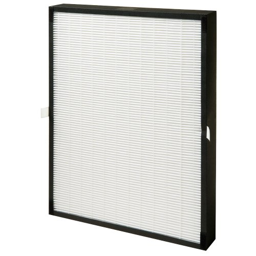 Cheap Winix 5000B Replacement HEPA Filter (5000B)