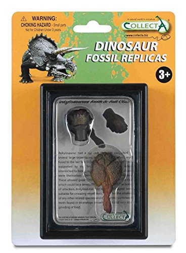 CollectA Tooth & Tail Club of Ankylosaurus Box Set