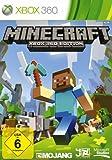 Platz 10: Minecraft