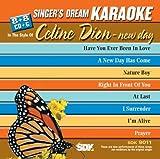 echange, troc Karaoke - Celine Dion New Day Karaoke