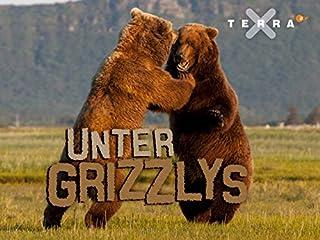Film Unter Grizzlys Stream