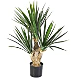 Artificial plant Yucca elephantipes, height 70 cm - 107 leaves