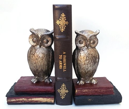 Wide Eyed Owl Bookends Pair - NOW 50% Off - Home Decoration Nice Book Ends