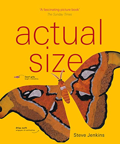Actual Size, by Steve Jenkins
