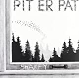 Shakey [12 inch Analog]