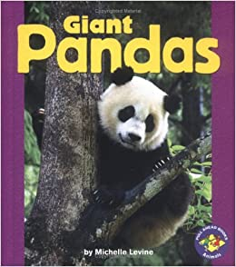 information about the habits and life of the giant panda bear Bear facts 36 facts about bears  the giant panda is actually a bear  factslides is dedicated to provide well-sourced and verified information that will help.