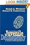Juvenile Delinquency: A Justice Perspective