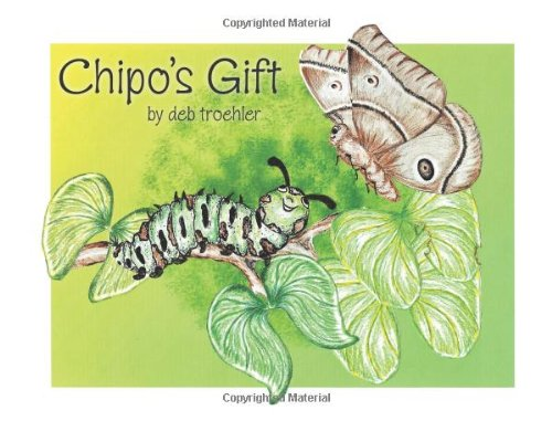 Chipo's Gift