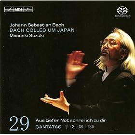 Ach Gott, wie manches Herzeleid, BWV 3: Recitative (and Chorale): Wie schwerlich lasst sich Fleisch und Blut (Tenor, Soprano, Bass)