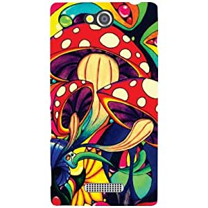 Sony Xperia C Back Cover - Flaunt Designer Cases
