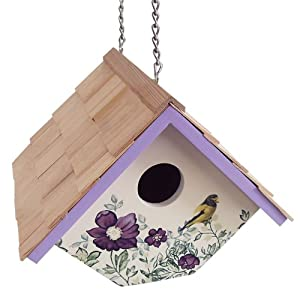 Home Bazaar Printed Wren Hanging Birdhouse, Anemone with Cream Background (Discontinued by Manufacturer)