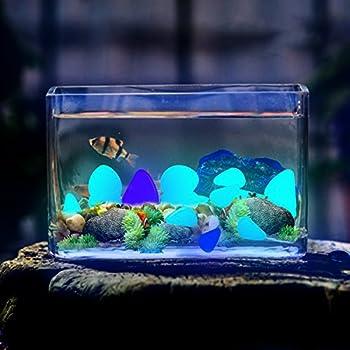 Lovebay 220pcs Glow in the Dark Garden Pebbles Glow Stones Rocks for Walkways Garden Path Patio Lawn Garden Yard Decor, Luminous Decorative Stones for Aquarium Fish Tank in Blue & Green & white