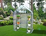 """Quictent® New Mini High Quality 56""""x29""""x77"""" Portable Green House 6 shelves Greenhouse"""