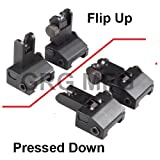 Flip Up Front and Rear Back up Iron Sight