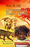 Adventures of Kimmi Jambo. The Mystery of the Black Diamond